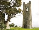 The Yellow Tower, Trim