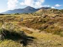 Murlough Nature Reserve