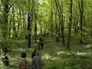 Walking in the Slieve Bloom Foothills