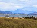 View of Croagh Patrick Mountain from property