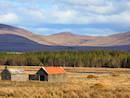 Landscape near the property