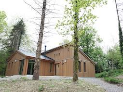 Detached Scandinavian Lodge